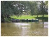 Рыболовная база «Трехречье»